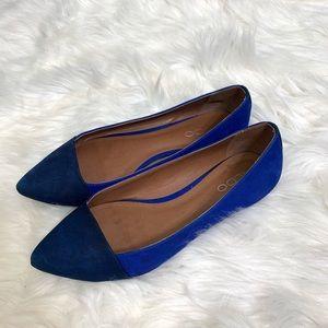 ALDO Pointed Toe Flats